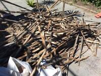 Free wood , kindling for log burner