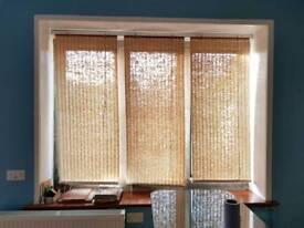 Reed roller blinds. Set of 3. 60cm x 155cm