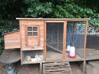new chicken coop with run and four 8 weeks old chics ( can deliver)