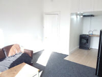 1 BED FLAT - TO LET - STRATHBUNGO - NEWLY DECORATED - SHAWLANDS