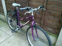 LADIES CONCEPT ZONE, MOUNTAIN BIKE, 26, ALLOY WHEEL