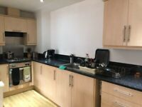 1 Double Bedroom close to Bolton University