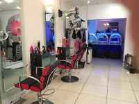 Senior hair stylist male/female