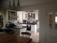 Single room for female lodger