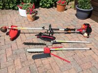 Garden hedge trimmer. strimmer and lopping chainsaw