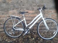 Specialized Globe Vienna 1 Ladies Women's Light Weight Hybrid Bike