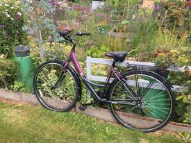 Ladies purple bicycle