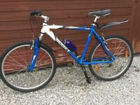 SCOTT ADULT HARD TAIL MOUNTAIN BIKE IN EXCELLENT CONDITION