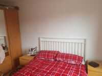 Lovely room in Guildford to rent