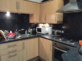 lovely spacious 3 bedroom flat for rent victorian style but modernised in excellent condition