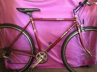 Retro 80's Dynamix Diplomat Road Bike