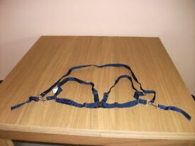 Mothercare child's safety harness in navy blue.