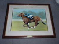Race Horse Picture - Generous