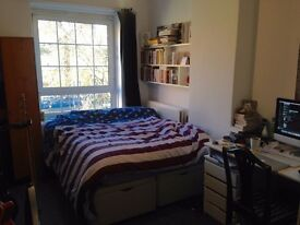 Double room available in Camberwell flatshare