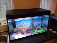 FLUVAL fish tank with builtin lights and stand,110 litres,filter,heater,ornaments,plastic plants