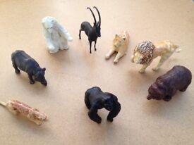 8 Wild animal models in plastic