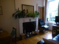 Comfy central 1-bed flat available short term