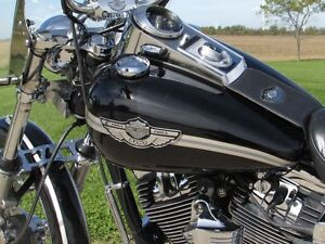 2003 harley-davidson FXDWG Dyna Wide Glide   $7,000 in Options a London Ontario image 20