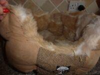 Cat bed & Igloo