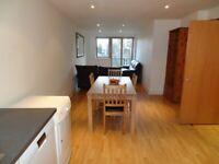 Large (812 sq feet), 2 bedroom, 2 bathroom apartment, storage, overlooking Meath gardens