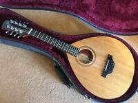 Buchanan pin bridge Mandolin with K&K piezo system and fitted case