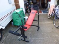 Pro Power workout bench with weights