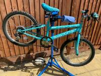 Free spirit Trouble Junior Mountain Bike