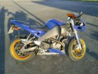 Buell for sale