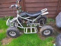 50cc 2 stroke Quad bike -NEED GONE TOMORROW !!!!!!!!!!!!!!!!!!!!!!!-£40
