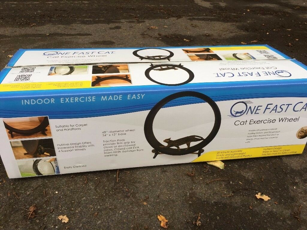 One Fast Cat Wheel New and Boxed