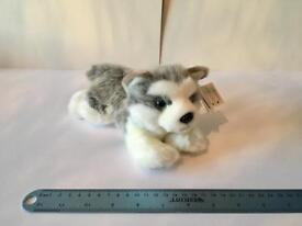 NEW husky plushy soft toy gift