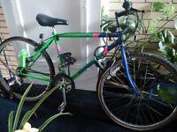 Emmelle 10 Speed Bike