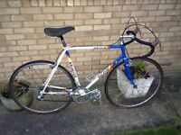 Raleigh Panasonic Team Replica 531C