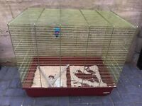Large spacious parrot / parakeet cage only £35 no offers