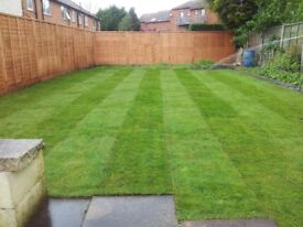 Ck Turfing (supply and install fresh turf £12sqm)