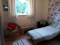 Beautiful Clean and spacious room in a quiet location. (living room not shared)