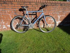 Orbea French Road Bike for sale