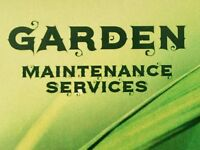 🌺 Garden maintenance services 🌺