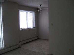 *INCENTIVES*Bachelor w/ Patio in Spotless Central Adult Bldg ~33 Edmonton Edmonton Area image 5