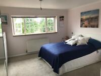 Double ensuite room to let. ****120£ per week for single and 160£ per week for double*****