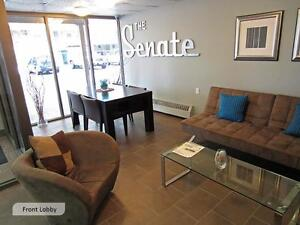 Ideal for London students! Secure bachelor apartment for rent London Ontario image 6