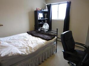 Ideal for London students! Secure bachelor apartment for rent London Ontario image 2