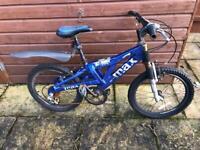 Boys blue Raleigh max bike