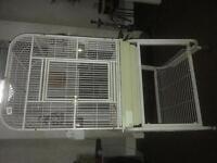 Pet cage bird