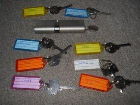 Tool Bump Rack Rake Try Out Lock Pick Keys set Skeleton Pratice Training locksmith