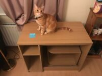 Wooden work desk in very good condition . Cat not included