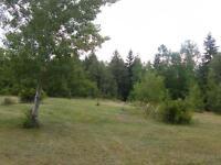 Large Property near Thorburn, NS