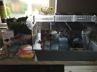 Small Animal/Hamster Cage loads of Accessories