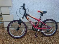 Boy's Raleigh Hot Rod Mountain Bike suitable for around 7-10 year old. 20 inch wheels and 6 gears.