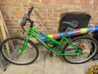 Raleigh Vixen bike - 15 speed